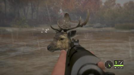 猎人荒野的呼唤:一只对着枪口卖萌的黄鹿