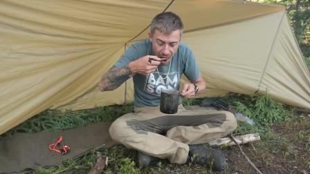 带着我新买的狗毛毡,防水布,野蓝莓,在丛林里露营了一夜