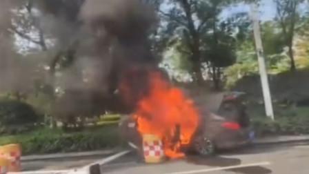 南京一辆网约车突然起火撞向花坛 致1死1伤