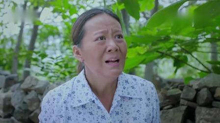 《兰桐花开》卫视预告第1版20190814:陈新豫管理村民遭反抗,母亲拖后腿第一个违反村规