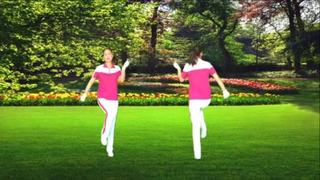 河口轻舞飞扬健身操第十七套第五节正背面演示