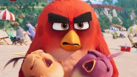 """《愤怒的小鸟2》""""猪鸟大作战""""片段,816全国上映!"""