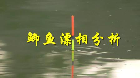 钓鱼新手必看,钓鲫鱼的常见的中鱼漂相分析,学会了你就是高手!