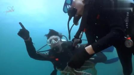 炽爱游戏:道妹和男主一起潜水捡海里的垃圾,终于一起做事情