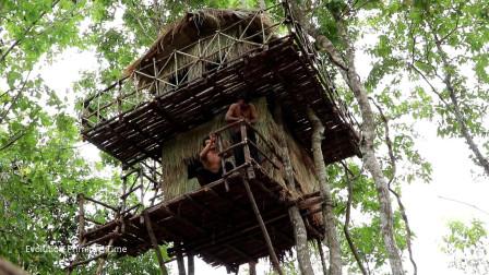 原始技能 在树上建造两层小屋