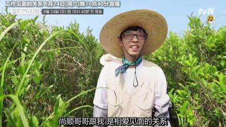 工作见面的关系:(中字)刘在石的新综艺节目哦!李孝利客串嘉宾~