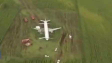 俄罗斯:客机遭遇鸟击迫降玉米地 乘客拍下全程
