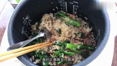 电饭煲新功能,除了煮饭还能够做煲仔饭?配上腊肠蘑菇,味道一绝