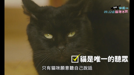 【猴姆独家】温情新作《爸爸,小不点不见了》首曝官方中字预告片