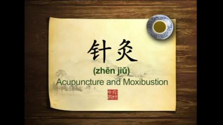 英语学习中国文化100集 第30集 针灸 Acupuncture