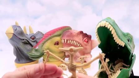 恐龙头玩具收藏箱侏罗纪世界恐龙化石玩具