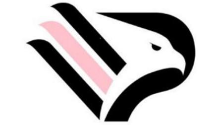 【vv游戏直播】巴勒莫欧冠决赛