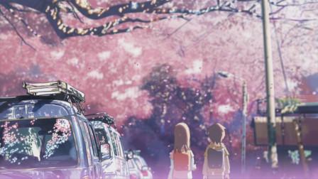 《秒速五厘米》樱花落下的微雨时节,男女主人公上演三段纯爱故事