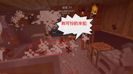 #游戏真好玩#好心带羊驼回家,结果灰飞烟灭-Minecraft我的世界02【梦妮】
