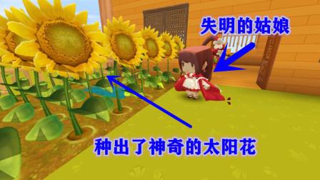 迷你世界故事:失明的姑娘种出了神奇的太阳花 却引来了坏心的郎中