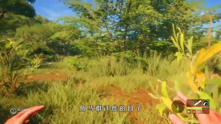 猎人荒野的呼唤3: 非洲丛林突遇200公斤雄狮 我该何去何从?