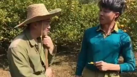 爆笑,许华升偷橘子被老表抓