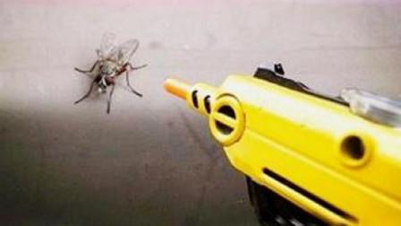"""牛人发明神器""""苍蝇枪"""",堪称""""苍蝇终结者"""",一枪射翻一个!成了苍蝇的噩梦"""