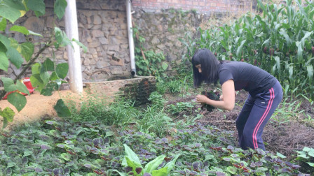 看看广西农村姑娘的安逸生活,这样的农村生活离你还有多远?