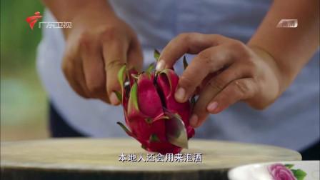 老广的味道精彩片段 火龙果怎么吃,看老广教你火龙果的各种做法