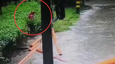 女子掉入2米施工井仅露头部 民警趟水营救