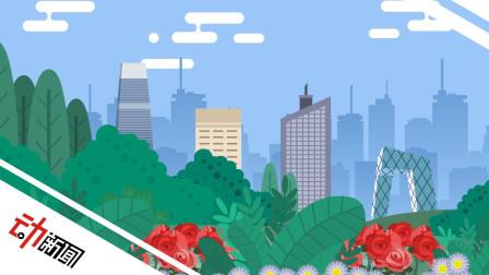 5分钟看透北京朝阳:绿化等于48个圆明园 线上借书送货上门