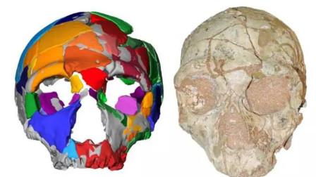 亚欧大陆上最古老的智人, 距今21万年前的希腊阿匹迪马洞穴古人类颅骨化石