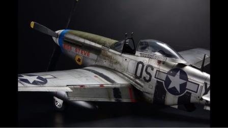 PLASMO 牛魔王48比例 P-51 D-5 野马 -史蒂夫小姐 - 飞机模型