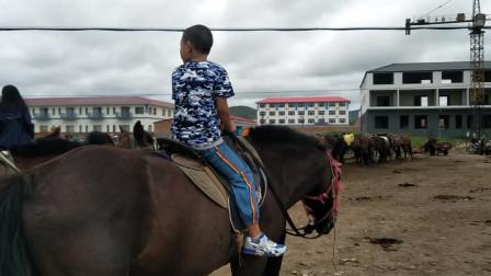 皮皮--07岁04月零10天 (皇家鹿苑骑马)