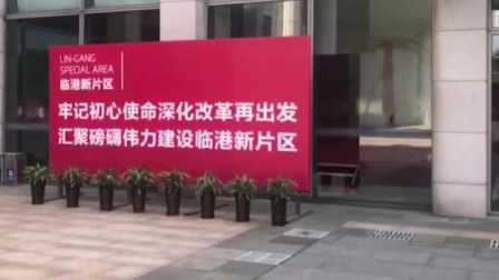 九点半 2019 上海自贸区临港新片区正式揭牌
