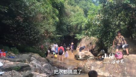 探访东莞大岭山森林公园,碧幽谷秘境,带上小孩来小溪洗澡捞虾米吧!