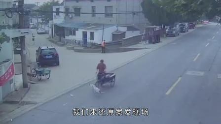 """老奶奶摔倒路旁,凶手是一只""""超速狗""""!狗主人无奈被判全责!"""