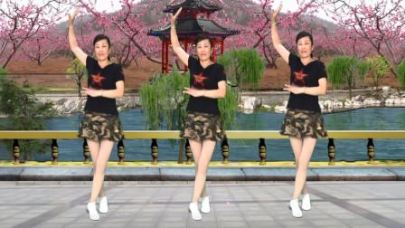 健康一生广场舞 16步水兵舞《万树繁花》零基础 适合初学者