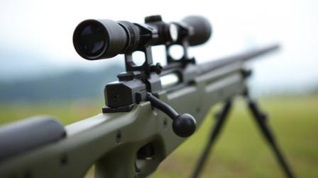 性能最好的狙击步枪,AWM和AWP的差别是什么?