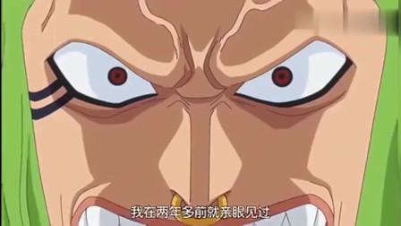 视频海贼王:两年多以前因为路飞,巴托洛米奥而出海,最强的追星族!