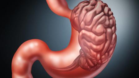 胃镜隔多久做一次比较合适?做多了伤胃吗?医生告诉你答案