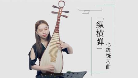 新爱琴从零开始学琵琶 第86课 七级练习曲《纵横弹》讲解
