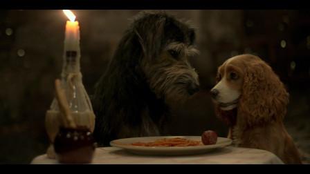 【猴姆独家】终于来了!迪士尼真狗版#小姐与流浪汉#首曝先导预告片!