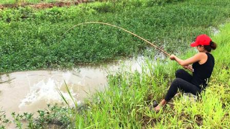 野外鱼多无人钓,妹子一个人出来钓一钓,看看都钓到了啥鱼了?
