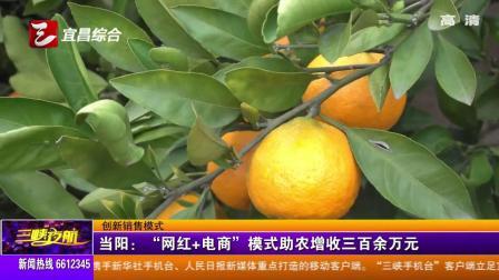 """当阳:""""网红 电商""""模式助农增收三百余万元"""