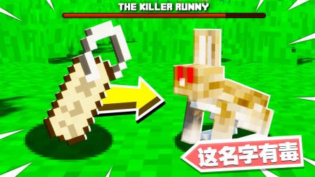 我的世界:玩家把神秘指令给兔子后会发生什么? 生存第十四集