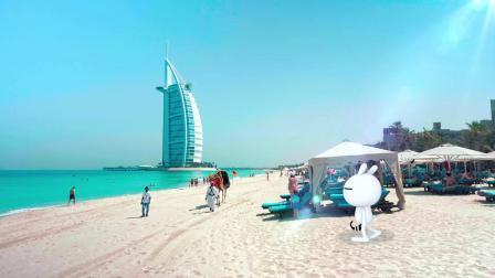 """兔斯基""""降临""""迪拜海滩"""
