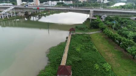 广州番禺区景观大桥航拍,景色非常美