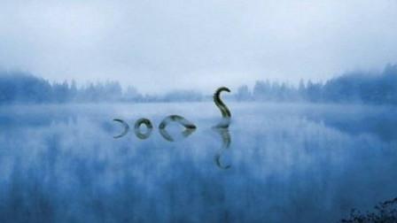 湖中惊现不明生物游弋,当地人都奉其为湖神,怎么回事?
