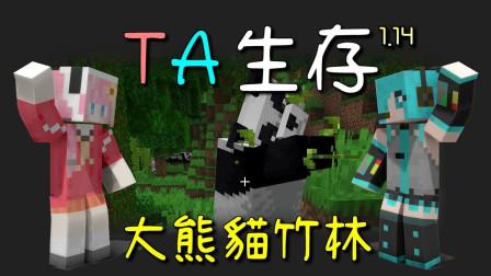 我的世界 1.14 TA 生存 ep28 吃货大熊猫