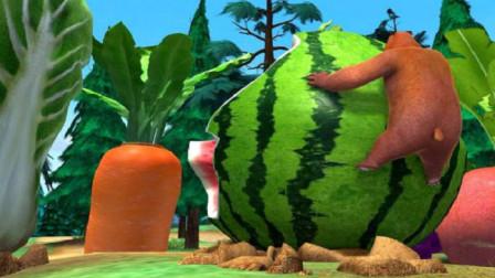 熊出没:熊大他们发现超级水果,个头特别大,光头强准备偷种子