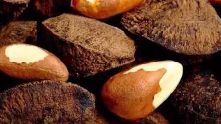 14 脂肪丨巴西坚果-抗癌助眠的最佳坚果