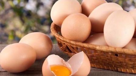 19 蛋白质丨鸡蛋-性价比超高的蛋白质之王,90%的人都吃错了