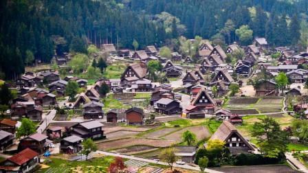 中国农村与日本相比有何不同?差距不是一般大,值得我们学习