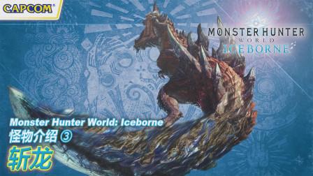 【怪物猎人世界.冰原】怪物介绍3:斩龙